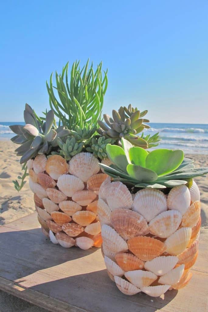 1-Seashell-Planter-684x1024