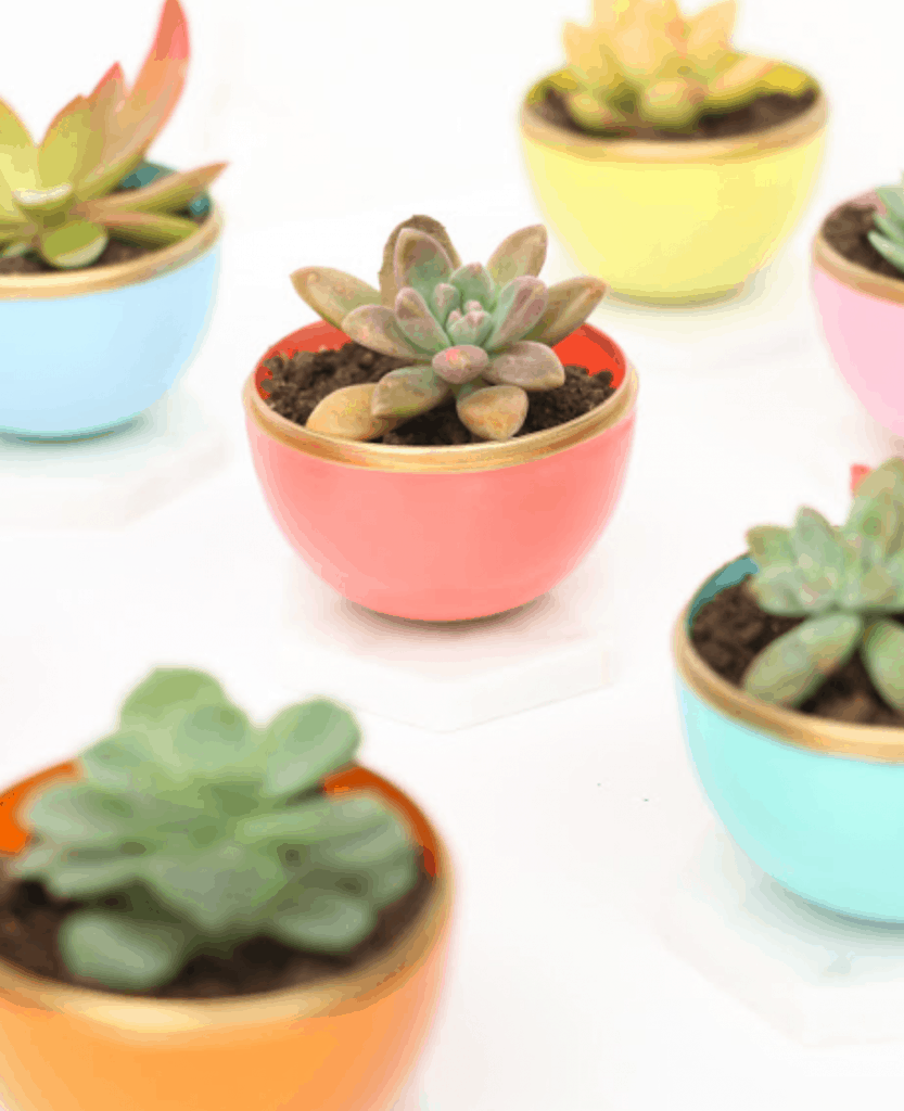 12-Tiny-Colorful-Planters-833x1024