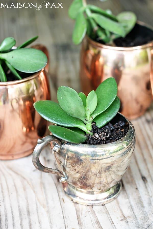 16-Upcycled-Mug-Planters