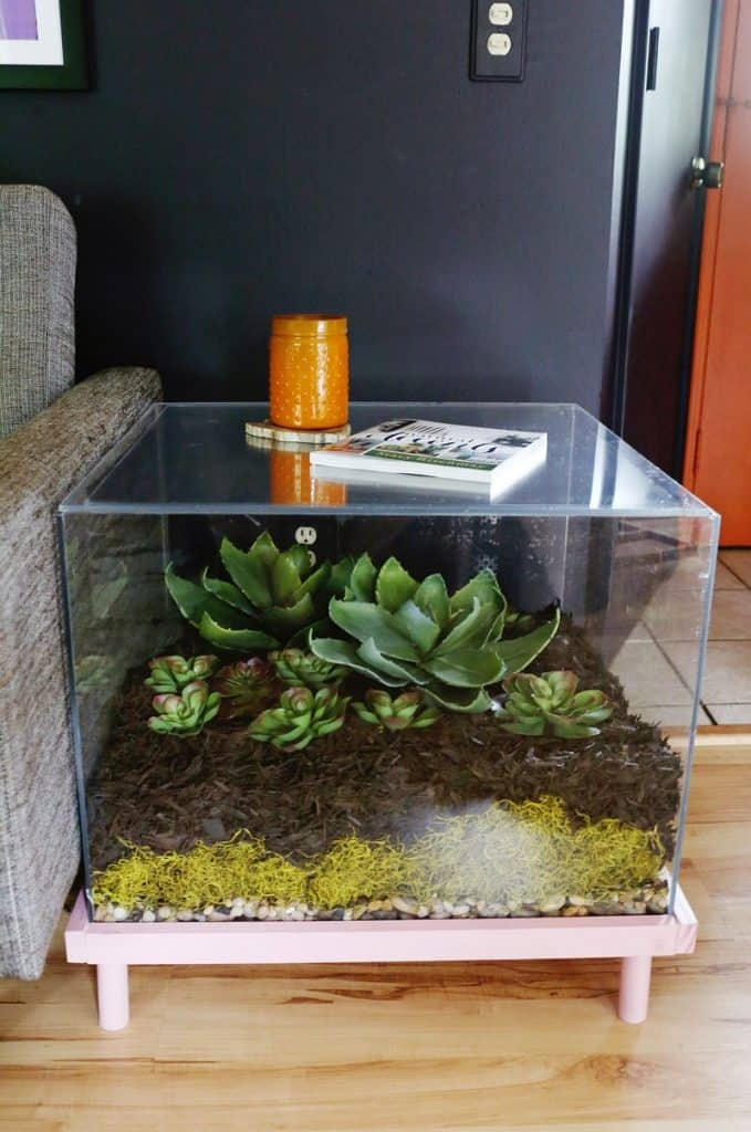 Terrarium Style Side Table