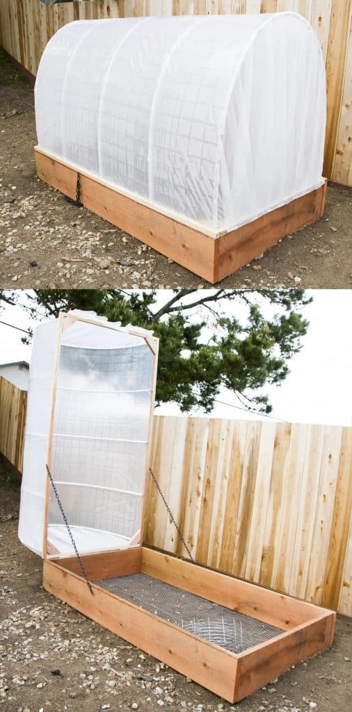 Covered, Hinged Greenhouse