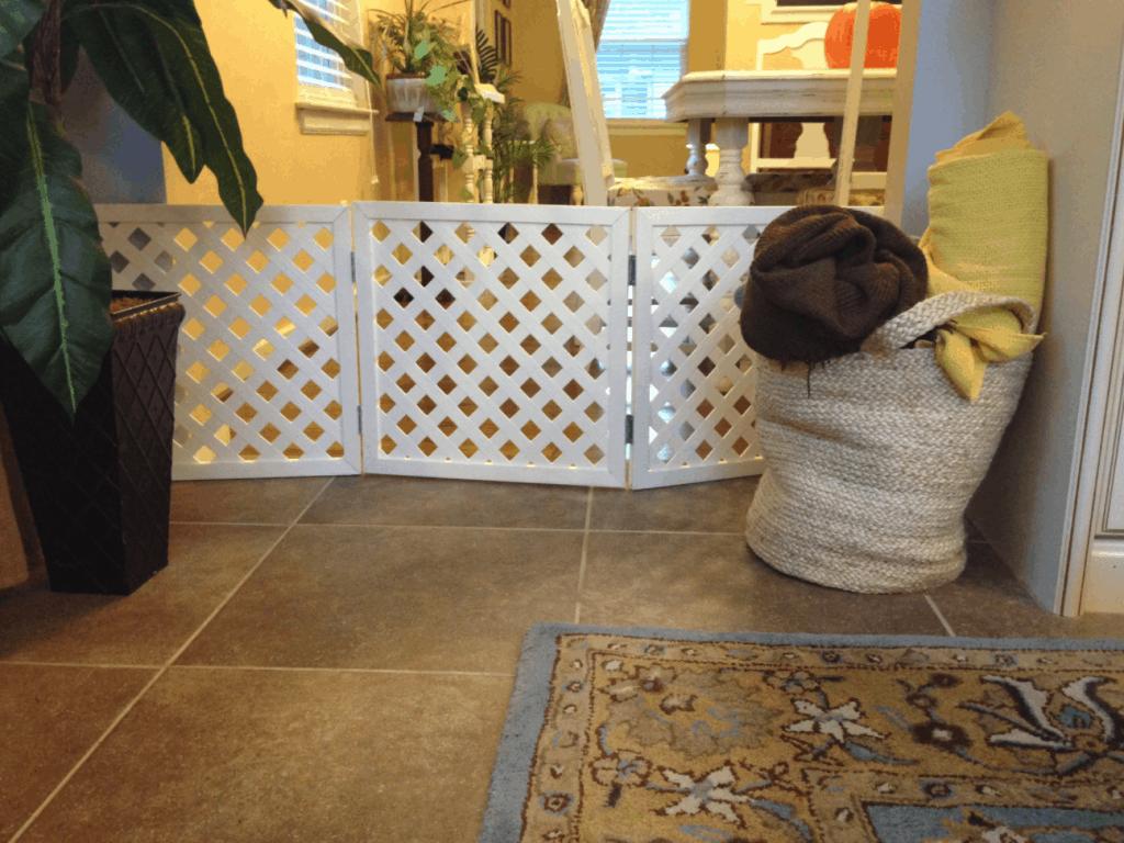 Lattice Dog Gate