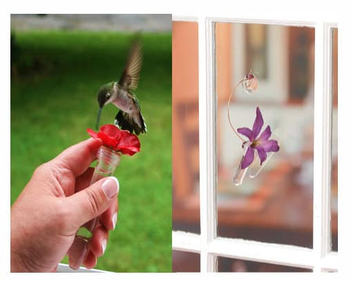 Tiny Hand-Held Window Feeder