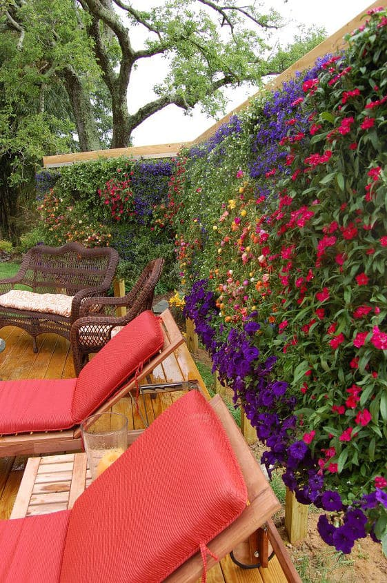 Turn Your Privacy Wall Into a Full on Garden